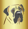 mastiff dog head on gold background vector image vector image