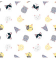 nice cats pattern vector image vector image