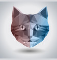abstract polygonal tirangle animal cat hipster vector image vector image