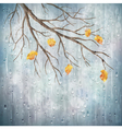 Autumn season rain weather tree branch design vector image