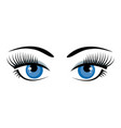 beautiful ice blue female eyes with eyelashes vector image