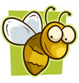 cartoon cute yellow smiling bee icon vector image vector image