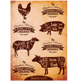 diagram cut carcasses of chicken pig cow lamb vector image vector image