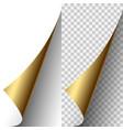 golden metallic realistic paper page corner vector image vector image