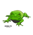 Illutration of frog vector image