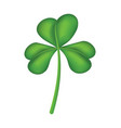 isolated green shamrock clover vector image vector image
