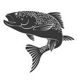 salmon silhouette vector image