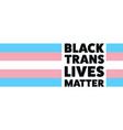 black trans lives matter concept template vector image vector image