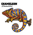 chameleon in hand drawing style vector image