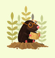 cute happy smiling mole character sitting and read vector image vector image