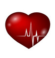heart and rhythm curve vector image