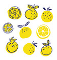 set of stylish oranges fruits vector image vector image