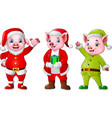 cartoon pigs wearing christmas costumes vector image
