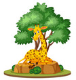 isolated giraffe in nature vector image vector image