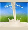 milk splash design element vector image vector image