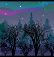 northern lights over night forest aurora vector image