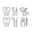 set of stomatological elements icons vector image