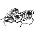 sketch of sport shoes vector image vector image