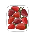 Strawberry sketch for your design vector image vector image