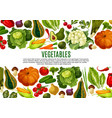 vegetable and mushroom border banner design vector image vector image