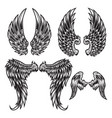 wings bird feather black white tattoo set 2 vector image vector image