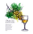 glass of white wine with branch grapes vector image
