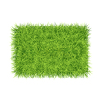 Grass carpet background vector image vector image
