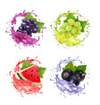 grape black currant and watermelon juice splash vector image vector image