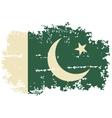 pakistani grunge flag vector image vector image