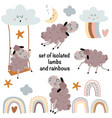 set isolated lambs and elements vector image vector image