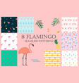 summer pink flamingo seamless pattern background vector image vector image