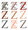 various combination fishnet letter z vector image