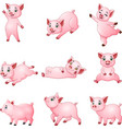 cartoon little pigs collection with different posi vector image