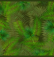 colorful naturalistic background from leaf of vector image vector image