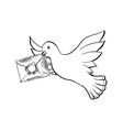 dove bird flying with envelope in sketch style vector image vector image