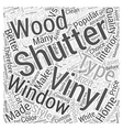 Vinyl Shutters VS Wood Shutters Word Cloud Concept vector image vector image