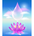 Water drop clouds and lilies vector image vector image
