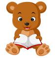 cute bear reading book cartoon vector image