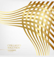 abstract mesh of golden lines isolated over white vector image vector image