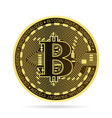 bitcoin coin vector image