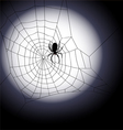 Halloween background - of spiders web vector image