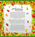 light autumn floral template vector image vector image