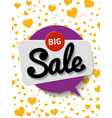 poster big discount for vector image vector image