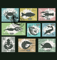 set postage stamps with underwater sea animals vector image