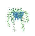 string pearls houseplant flat vector image vector image