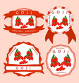 the red goji vector image vector image
