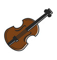 violin fiddle musical instrument traditional vector image