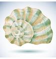Watercolor sea shell vector image