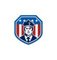 American Security Guard Flag Shield Retro vector image vector image