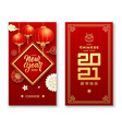 chinese lantern flower and cloud with message vector image